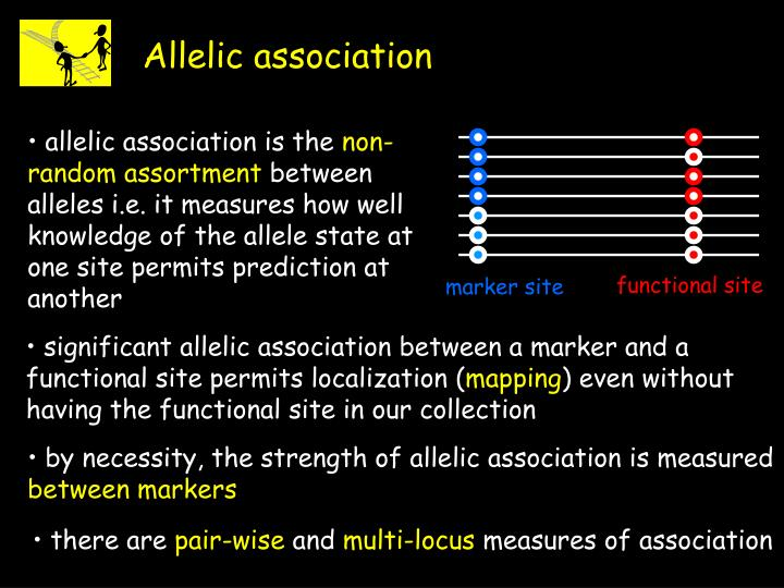 Allelic association