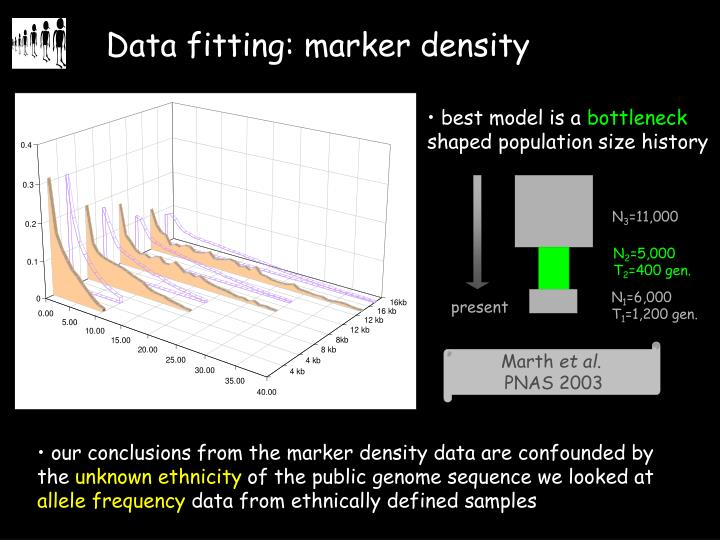 Data fitting: marker density