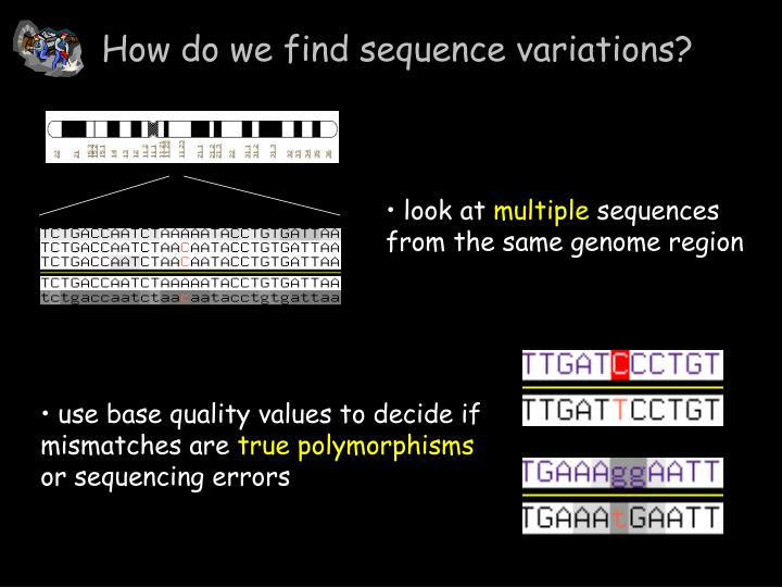 How do we find sequence variations
