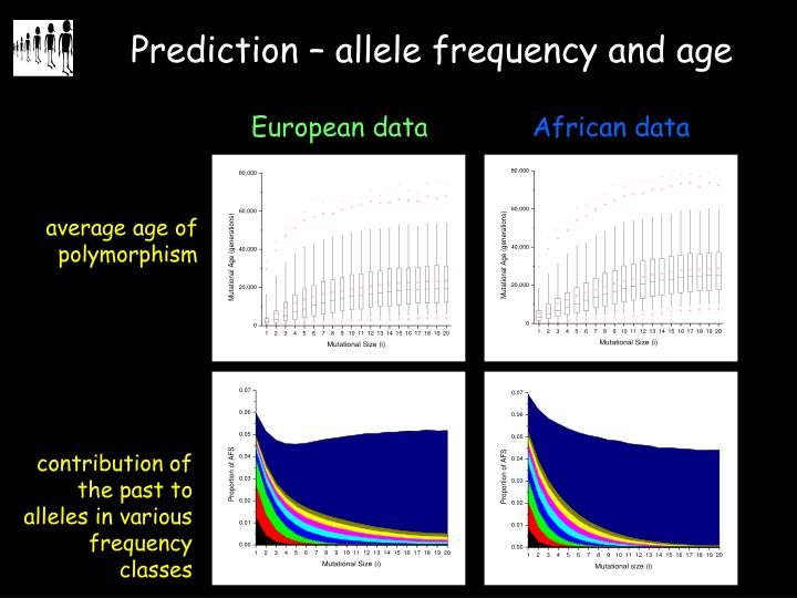 contribution of the past to alleles in various frequency classes