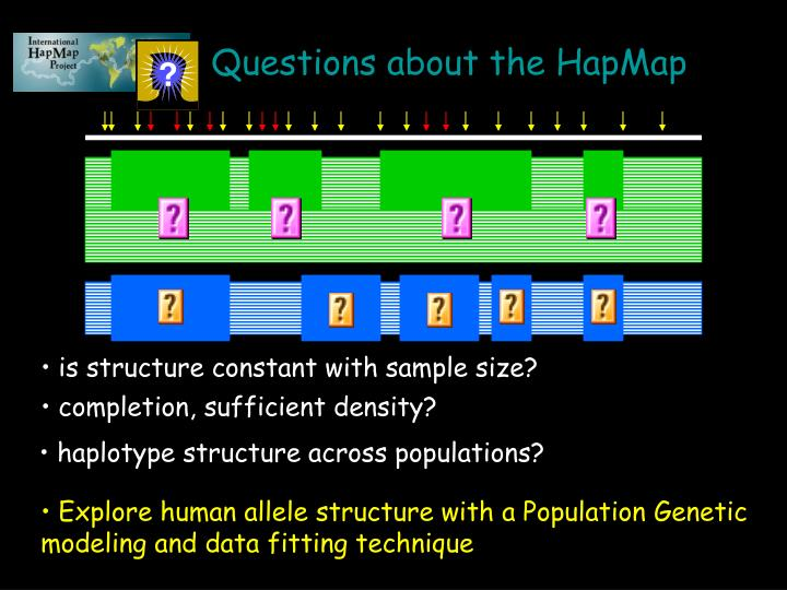 Questions about the HapMap