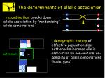 the determinants of allelic association