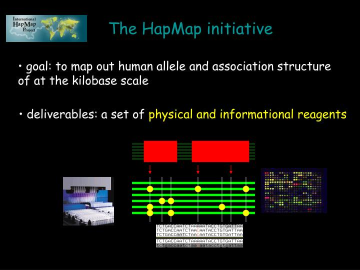 The HapMap initiative