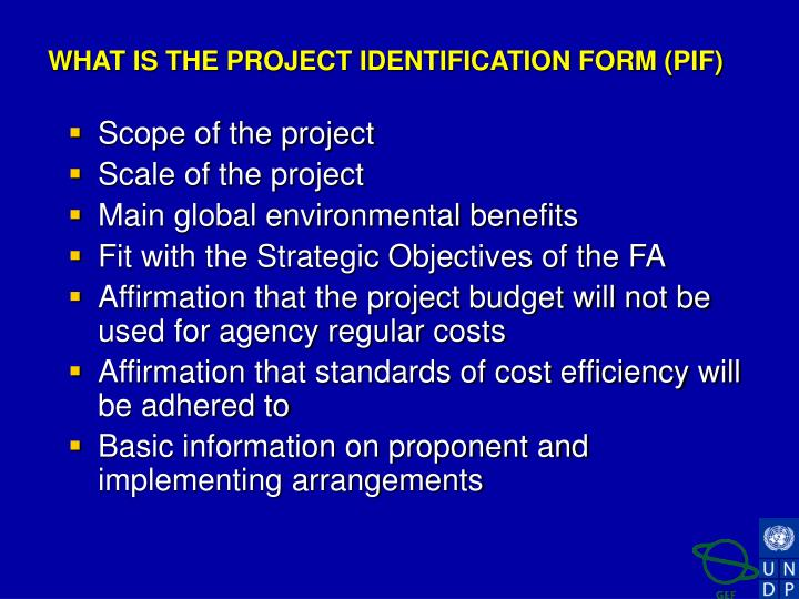 WHAT IS THE PROJECT IDENTIFICATION FORM (PIF)