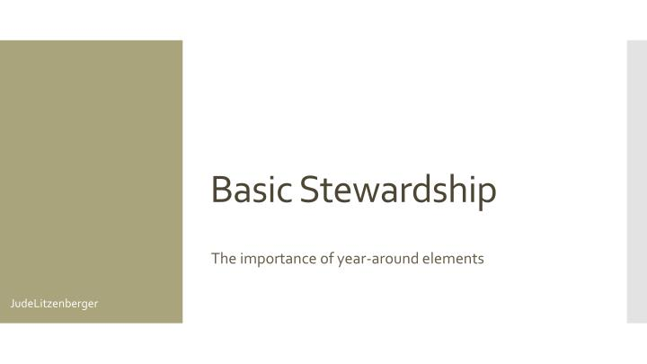 Basic Stewardship