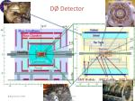 d detector1
