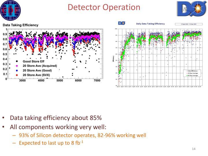 Detector Operation