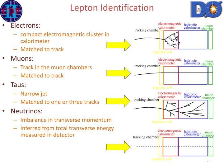 Lepton Identification