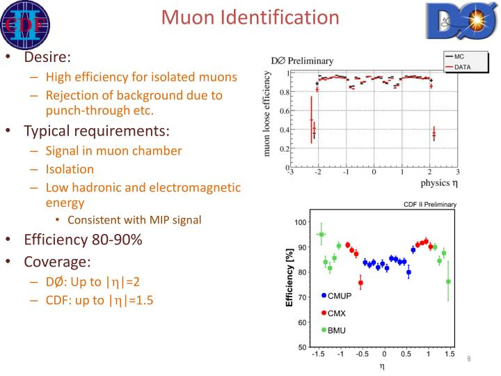 Muon Identification