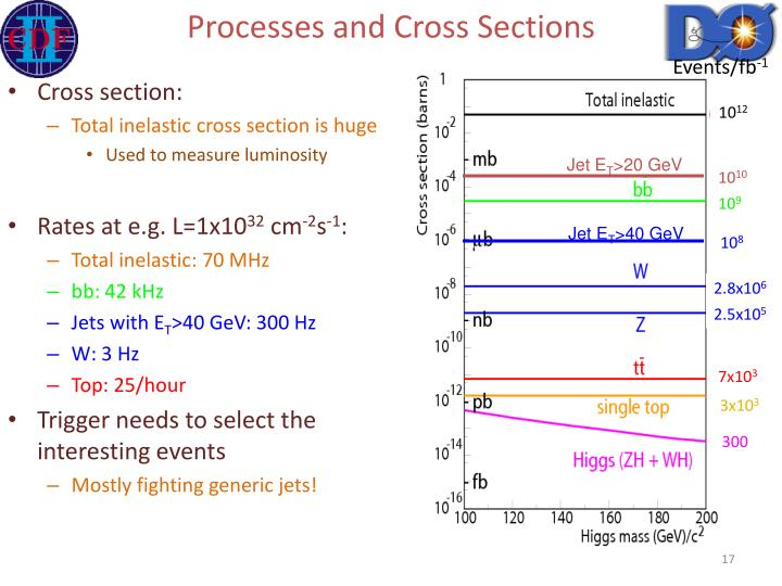 Processes and Cross Sections