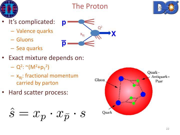 The Proton