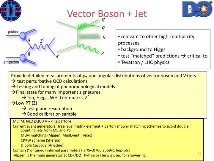 Vector Boson + Jet