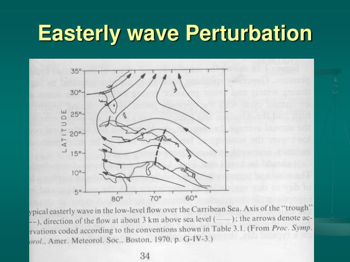 Easterly wave Perturbation