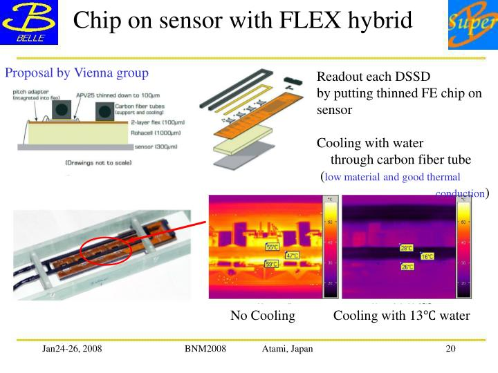 Chip on sensor with FLEX hybrid