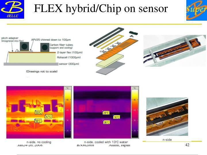 FLEX hybrid/Chip on sensor