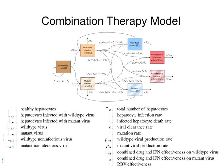 Combination Therapy Model