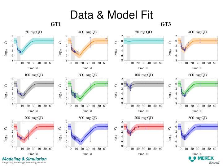 Data & Model Fit
