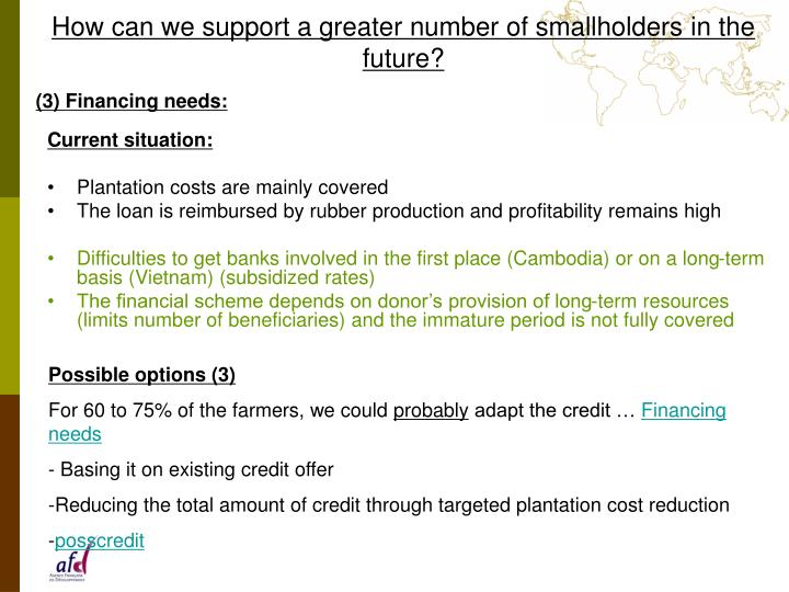 How can we support a greater number of smallholders in the future?