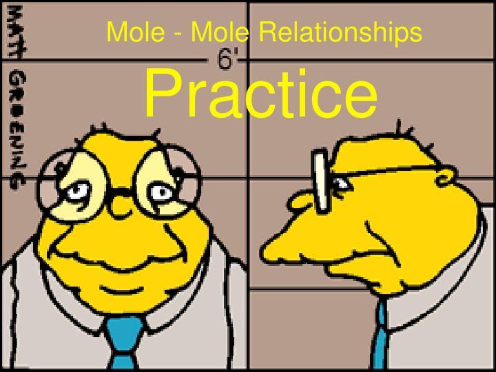 Mole - Mole Relationships