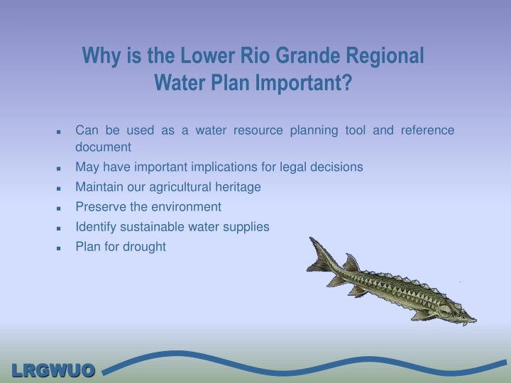 Why is the Lower Rio Grande Regional Water Plan Important?