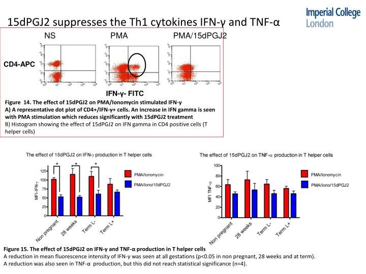 15dPGJ2 suppresses the Th1 cytokines IFN-