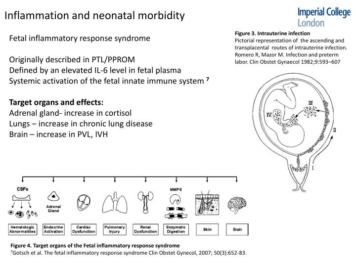 Inflammation and neonatal morbidity