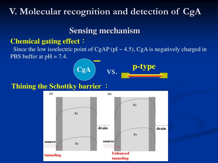 V. Molecular recognition and detection of CgA