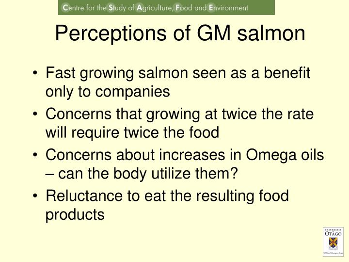 Perceptions of GM salmon