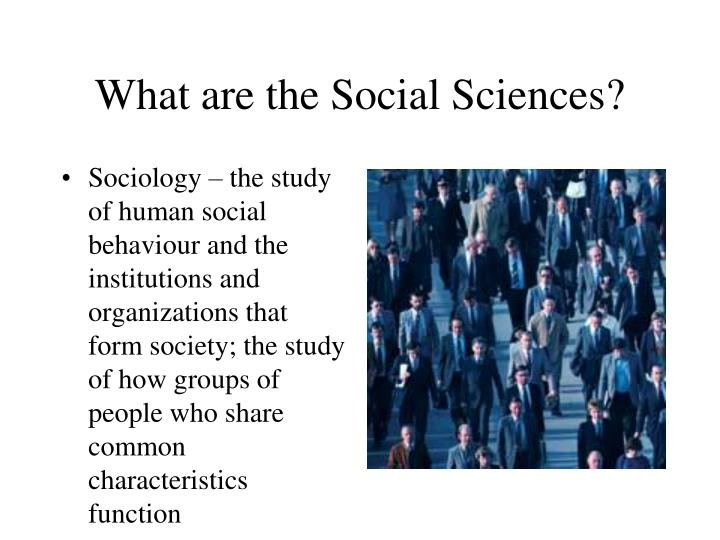 What are the social sciences1