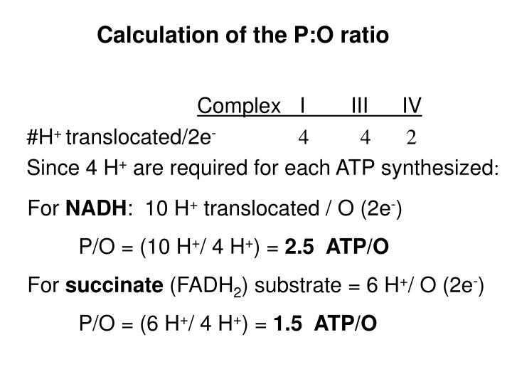 Calculation of the P:O ratio