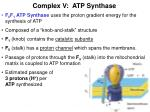 complex v atp synthase
