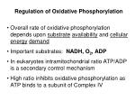 regulation of oxidative phosphorylation