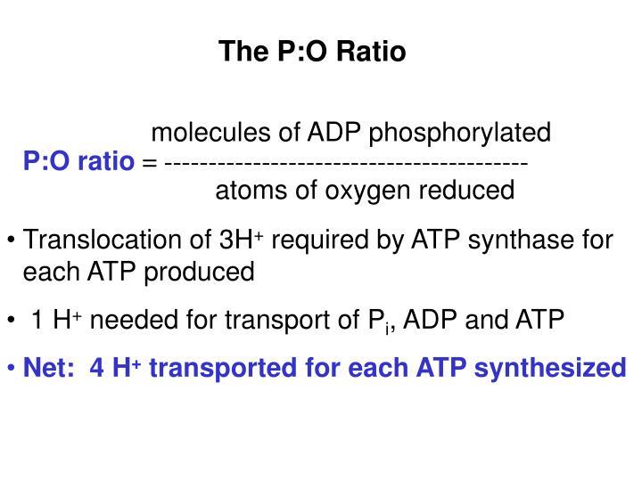 The P:O Ratio