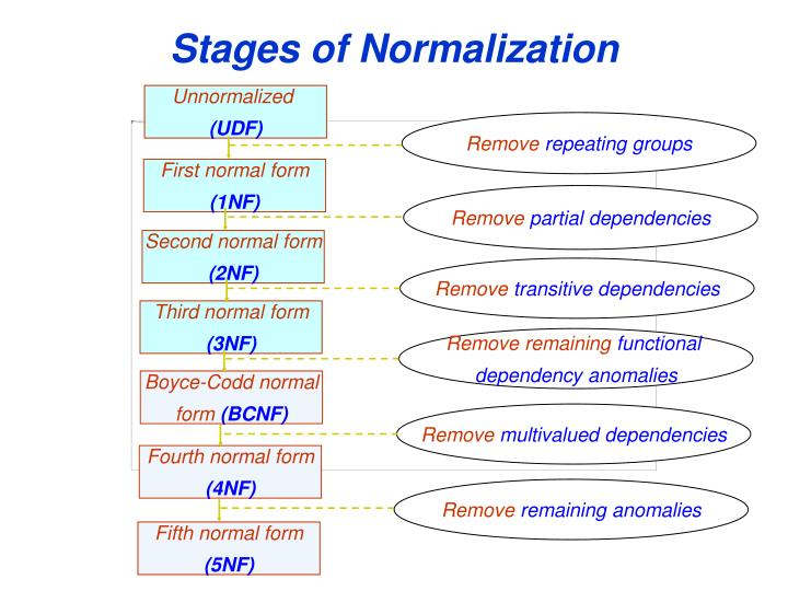 Stages of