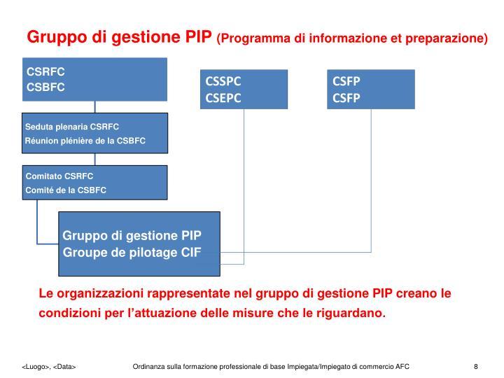 Gruppo di gestione PIP