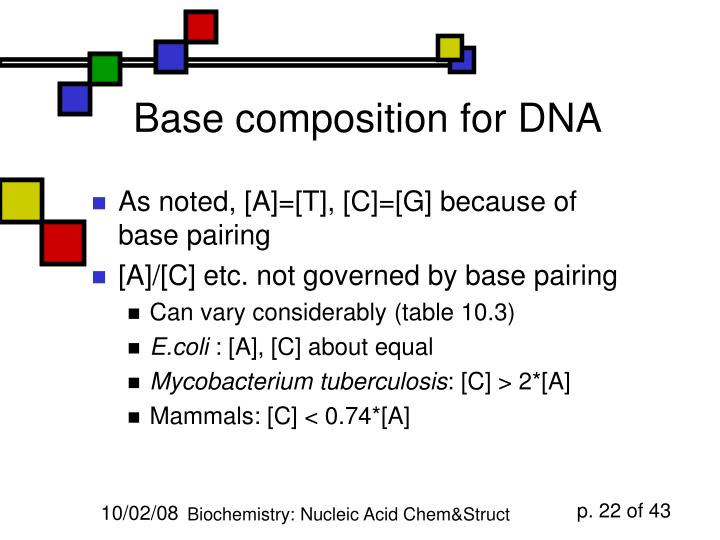 Base composition for DNA