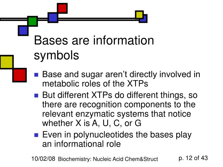 Bases are information symbols