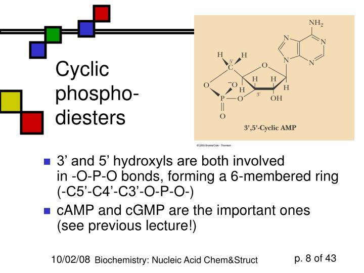 Cyclic phospho-diesters