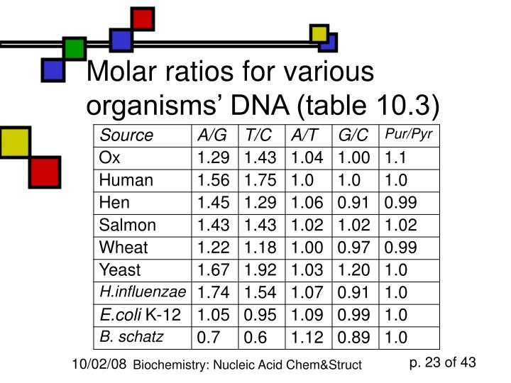 Molar ratios for various organisms' DNA (table 10.3)