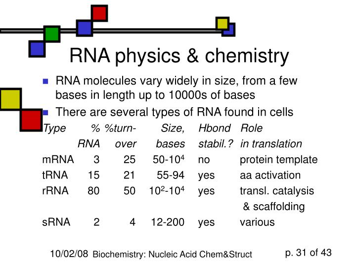 RNA physics & chemistry