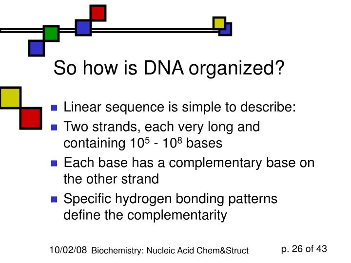 So how is DNA organized?