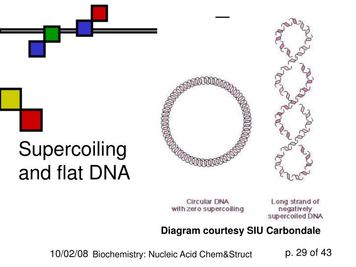Supercoiling and flat DNA
