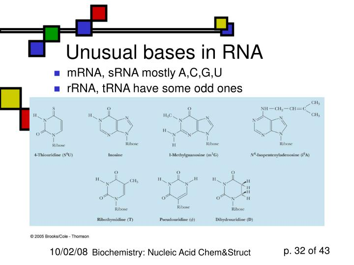 Unusual bases in RNA