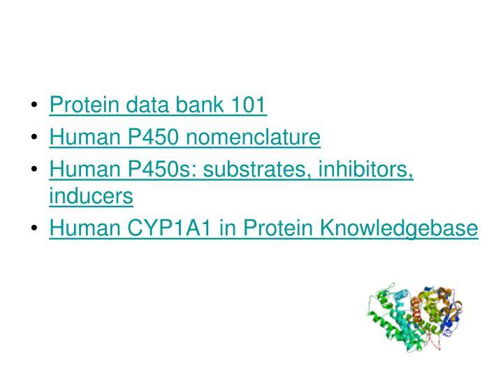 Protein data bank 101