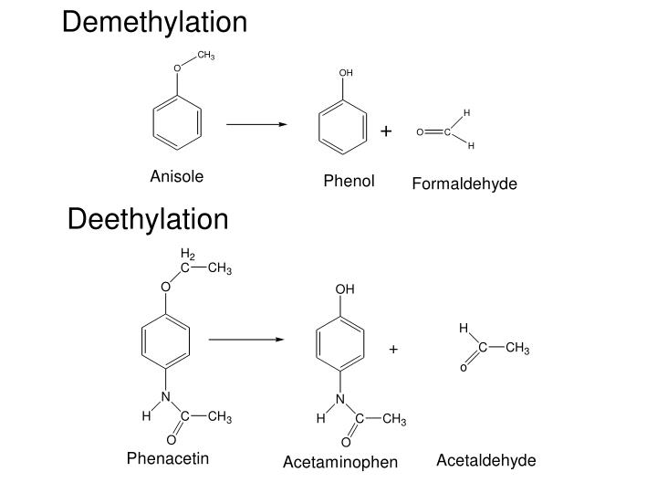 Demethylation