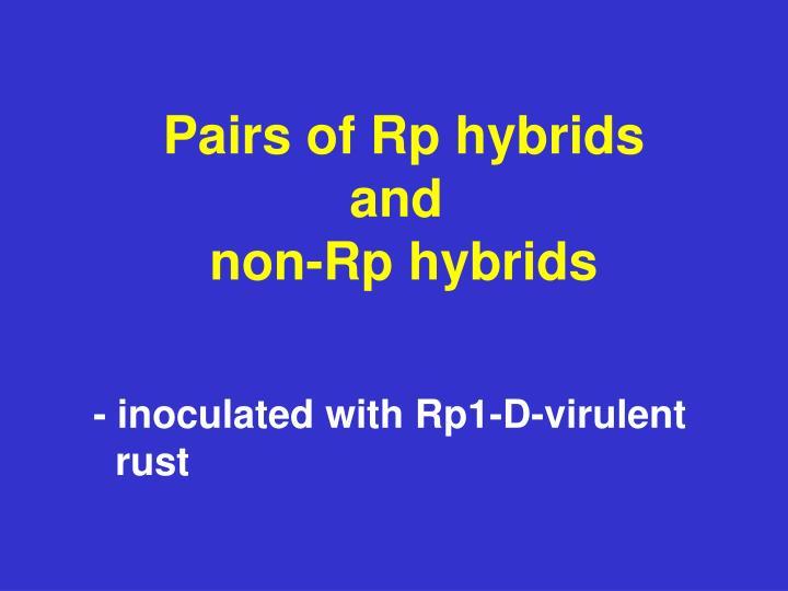 Pairs of Rp hybrids