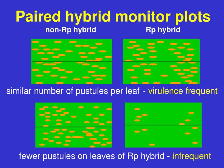 Paired hybrid monitor plots