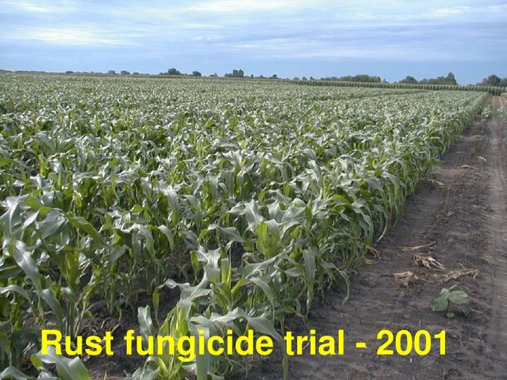 Rust fungicide trial - 2001