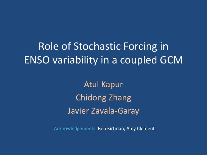 Role of Stochastic Forcing in