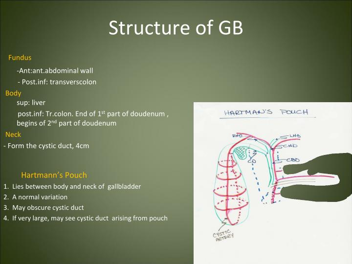 Structure of GB